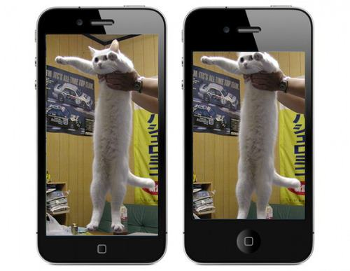 iphone-5-longcat