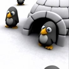 Penguins in an Igloo