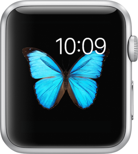 Apple-Watch-display